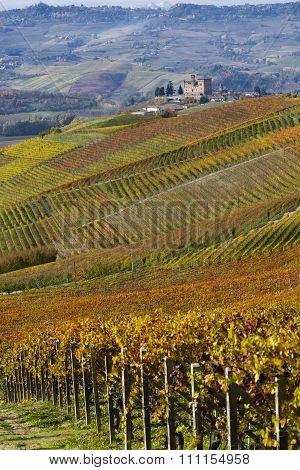 View Of Autumn The Langhe Unesco Heritage