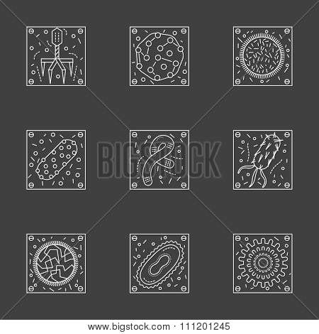 White line viruses and bacteria vector icons set