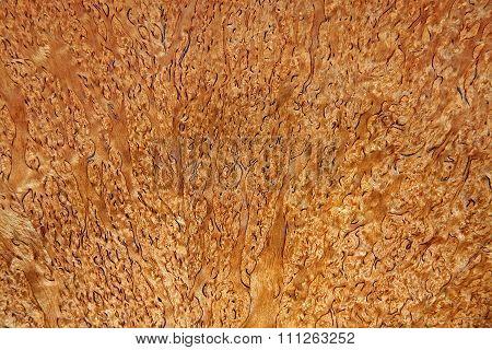 Balsa Wood Background