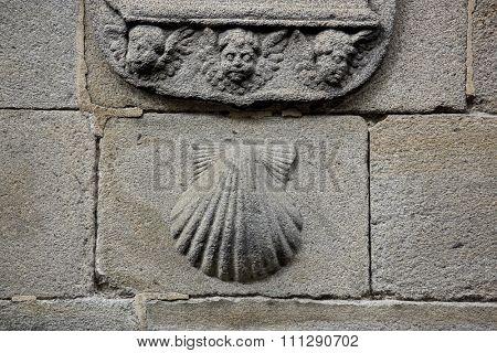 Pilgrim's shell (Venera) symbol of St James and Camino de Santiago