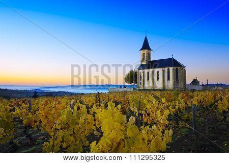Church And Vineyards Of Saint Laurent D'oingt During Sunrise, Beaujolais, France