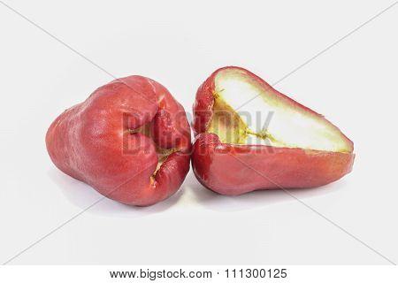 Red Bell Fruit