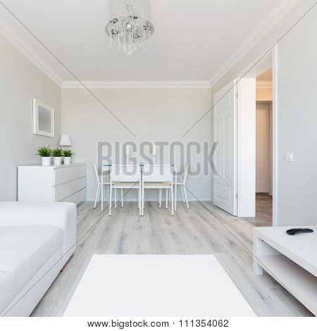 Modern Style Flat Interior