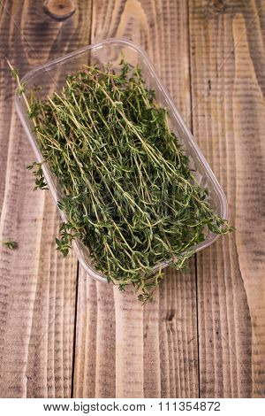 Aromatic Rosemary In Plastic Box
