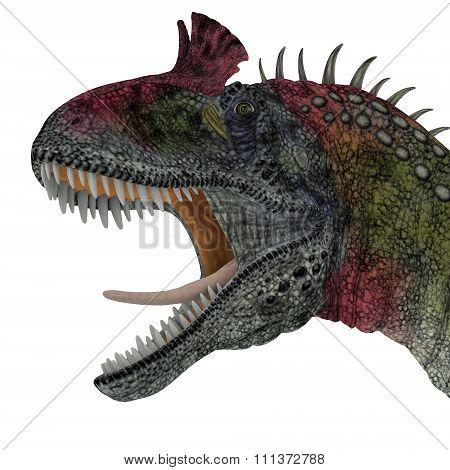 Cryolophosaurus Dinosaur Head