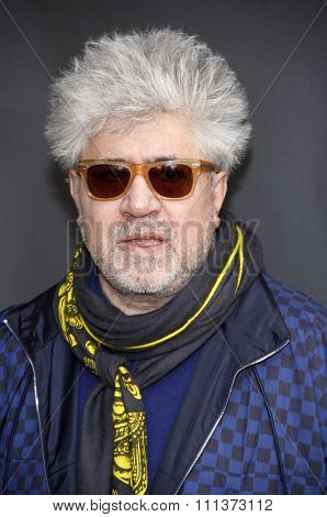 Pedro Almodovar at the American Cinematheque's 69th Annual Golden Globe Awards Foreign-Language Nominee Event held at the Egyptian Theater in Los Angeles on January 14, 2012.