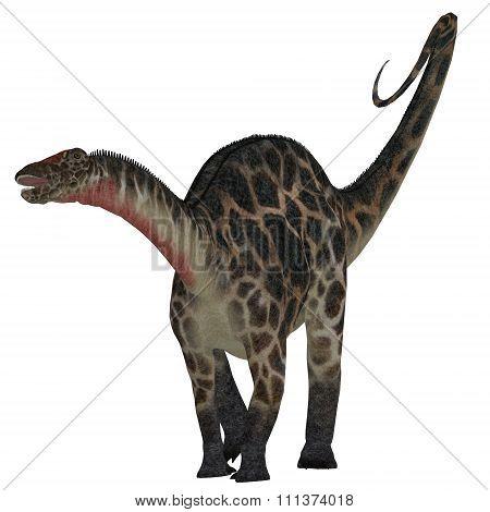 Dicraeosaurus On White