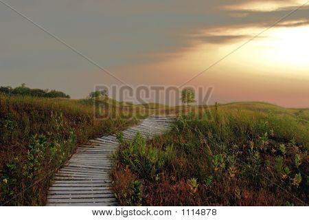 Pathway To Heaven