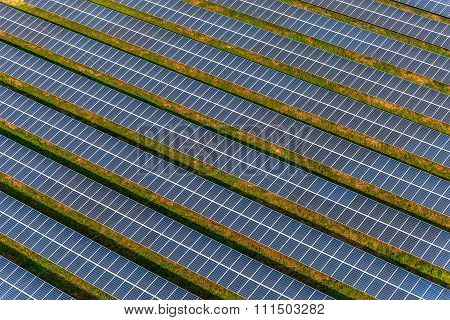 Solar farm, solar panels photo from the air