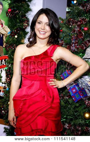 Ali Cobrin at the Los Angeles premiere of 'A Very Harold & Kumar 3D Christmas' held at the Grauman's Chinese Theater in Hollywood on November 2, 2011.