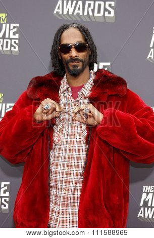 CULVER CITY, CA - APRIL 14, 2013: Snoop Dogg at the 2013 MTV Movie Awards held at the Sony Pictures Studios in Culver City, CA on April 14, 2013.