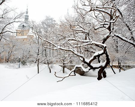 Winter park with snow covered trees and mansion in background, outdoor.