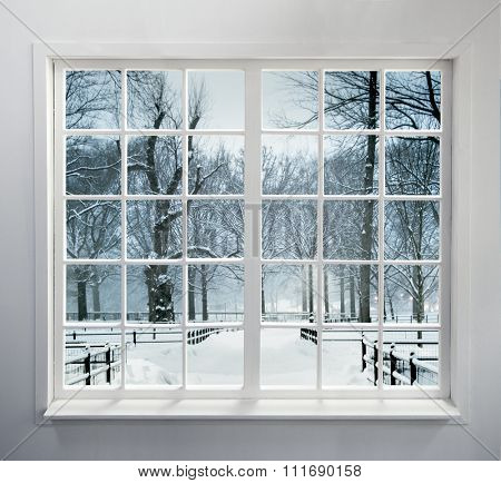 Residential window with snow and trees
