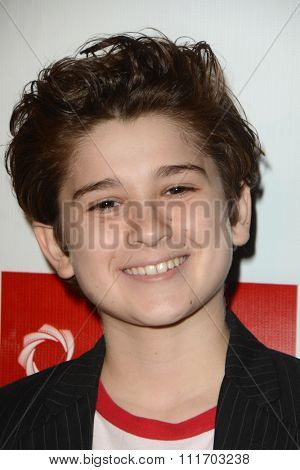 LOS ANGELES - DEC 10:  Jax Malcolm at the A Christmas Star Premiere at the TCL Chinese 6 Theaters on December 10, 2015 in Los Angeles, CA