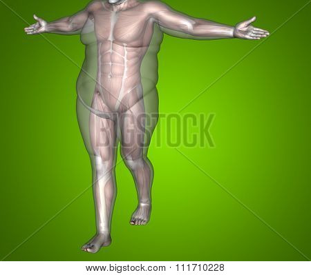 Concept or conceptual 3D fat overweight vs slim fit diet with muscles young man green gradient background for weight loss, body, fitness, fatness, obesity, health, healthy, male, dieting or shape