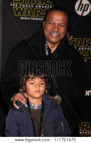 LOS ANGELES - DEC 14:  Billy Dee Williams at the Star Wars: The Force Awakens World Premiere at the Hollywood & Highland on December 14, 2015 in Los Angeles, CA