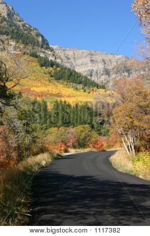 Colorful Country Autumn Road