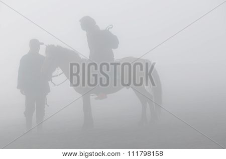 Silhoutte of the Horseback Ride