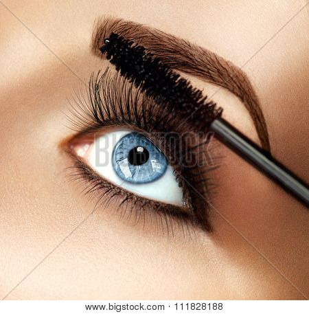 Mascara Makeup Applying closeup. Long Lashes closeup. Mascara Brush. Eyelashes extensions. Makeup for Blue Eyes. Eye Make up Apply