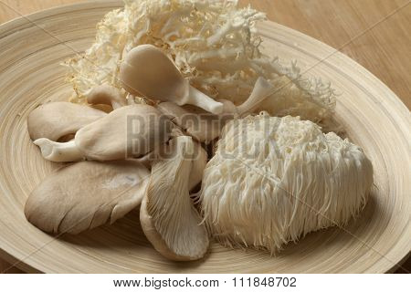 Bowl with fresh coral fungus, Lion's Mane Mushroom and oyster mushrooms  poster