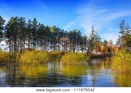 Autumn scenery on the river bank