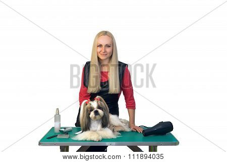 Woman Groomer With Cute Shih-tzu Dog