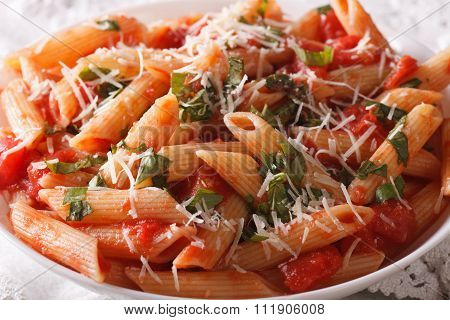 Arrabiata Pasta Penne With Parmesan Cheese Macro. Horizontal
