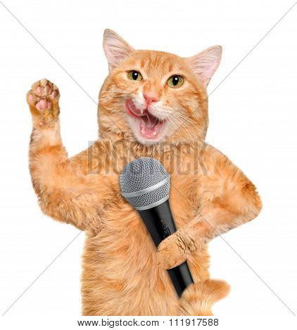 Cat with a microphone.