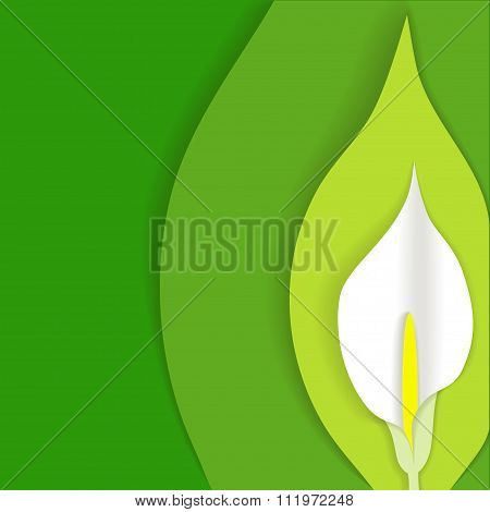 Green Background With White Calla Flower Cut Out Of Paper At The Side, Material Design Style, In Vec