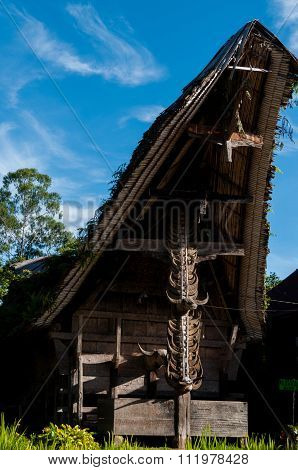 Traditional House front in Tana Toraja Decorated With Carabao buffalo Horns