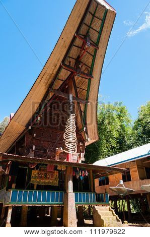 Unique and Colorful traditional House in Tana Toraja under blue sky with buffalo horn