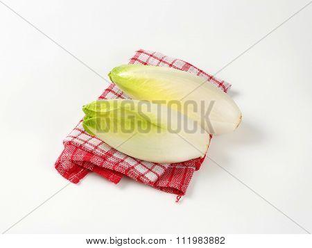 heads of fresh belgian endive on checkered dishtowel