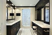 Master bath in luxury home with black cabinetry poster