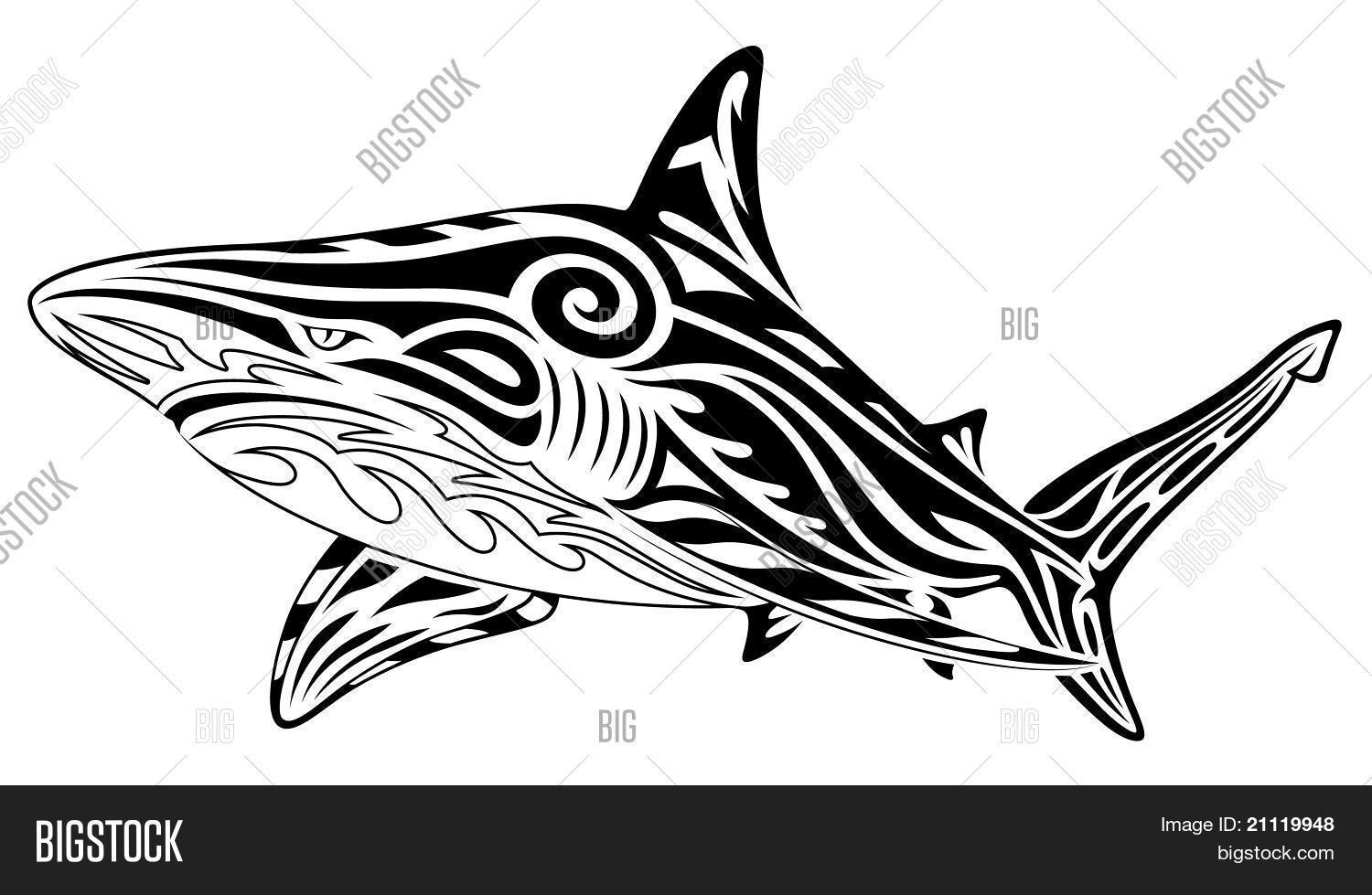 fdd8a636f Shark, Tribal Tattoo Vector & Photo (Free Trial) | Bigstock