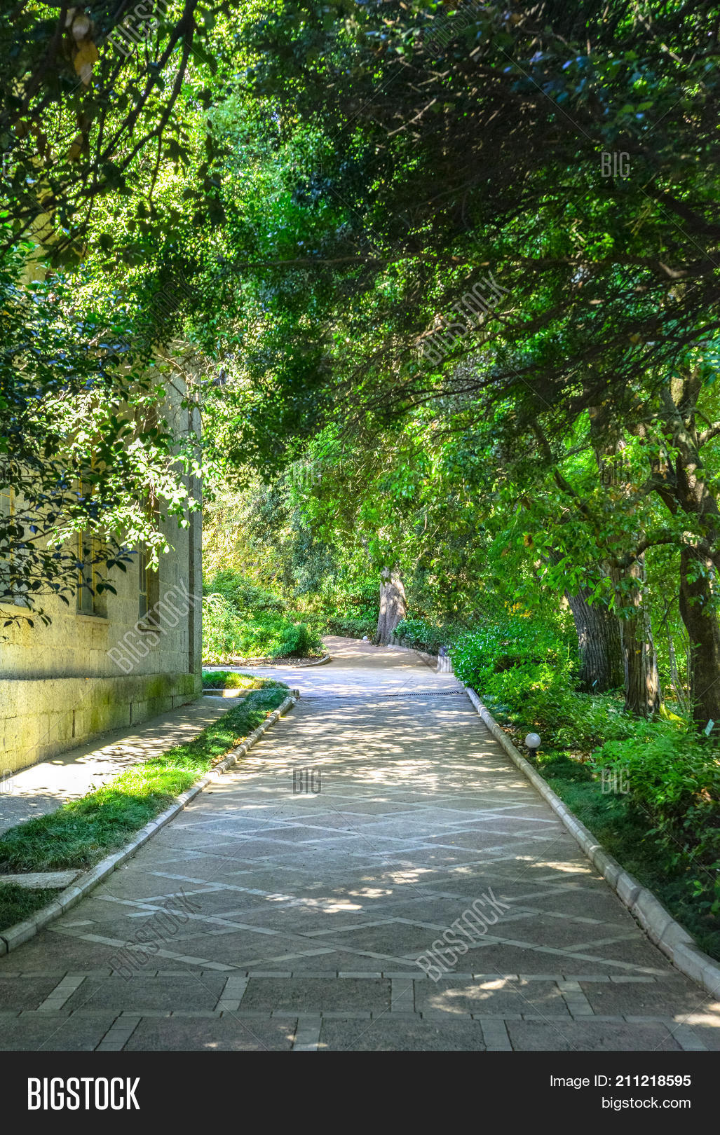 Green Park Road Trees Image Photo Free Trial Bigstock