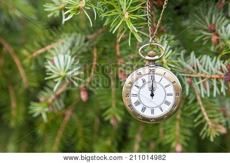 Christmas tree background. Happy New Year Xmas theme. Retro classic Vintage pocket watch over fir branches. Winter is coming. Time is running up, Clock Concept. Change of seasons.