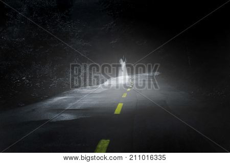 Apparition of female ghost on the road in deep dark forest