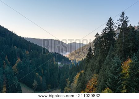 Autumn landscape - Black Forest. View of a valley in the Black Forest on a foggy morning.