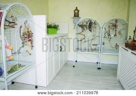 Bird room in domestic house converted for use of small parrots. Individual cages storage space to fly safely and a feeding and play station.