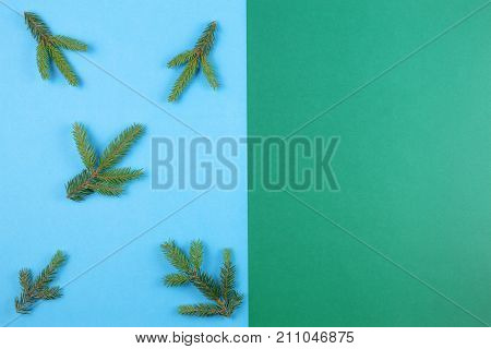 Christmas tree branch on blue and green background. T