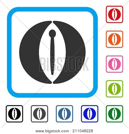 Female Genitals icon. Flat grey pictogram symbol inside a light blue rounded square. Black, gray, green, blue, red, orange color additional versions of Female Genitals vector.