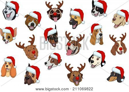 Vector illustration set of funny purebred dogs, for Christmas