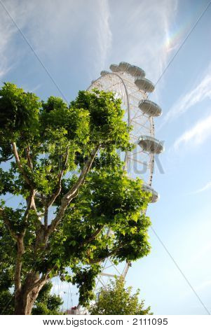 London Eye Towering Above A Tree In