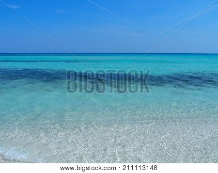 Sandy beach at Caribbean Sea in VARADERO city in CUBA with clear water on seaside landscape and exotic palms and trees clear blue sky in 2017 warm sunny spring day North America on March.