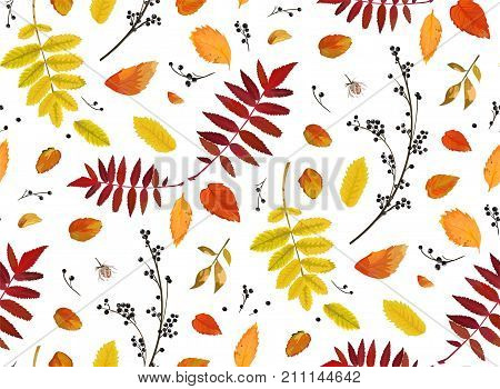 Vector Seamless patten background floral watercolor style Autumn fall season colorful falling orange yellow brown red fall leaves berries forest maple oak tree. Decorative Fabric textile paper texture