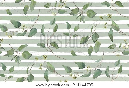 Eucalyptus different tree foliage natural branches with green leaves seeds tropical seamless pattern watercolor style. Vector decorative beautiful elegant illustration light blue stripped background