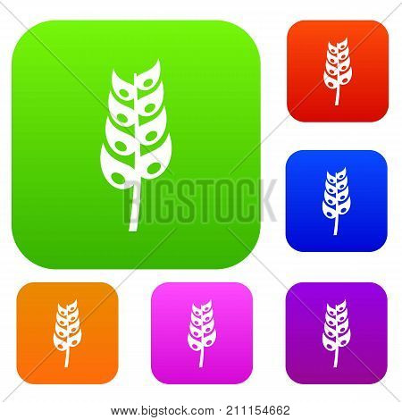 Ripe spica set icon color in flat style isolated on white. Collection sings vector illustration