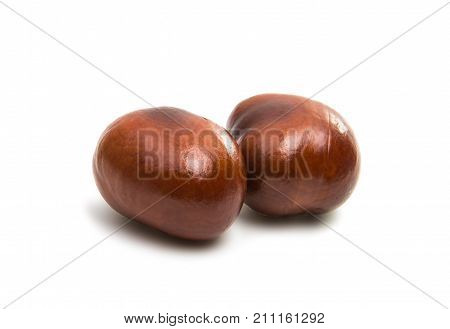brown natural chestnut isolated on white background