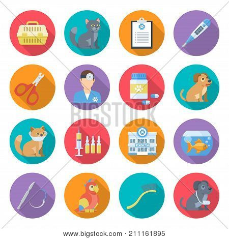 Veterinary care icon set. Expert services and compasionate help for pets, animal hospital providing veterinary care to dogs, cats. Vector flat style cartoon illustration isolated on white background
