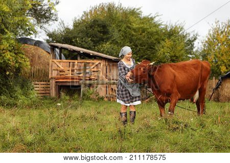 young girl farmer in the village with a cow
